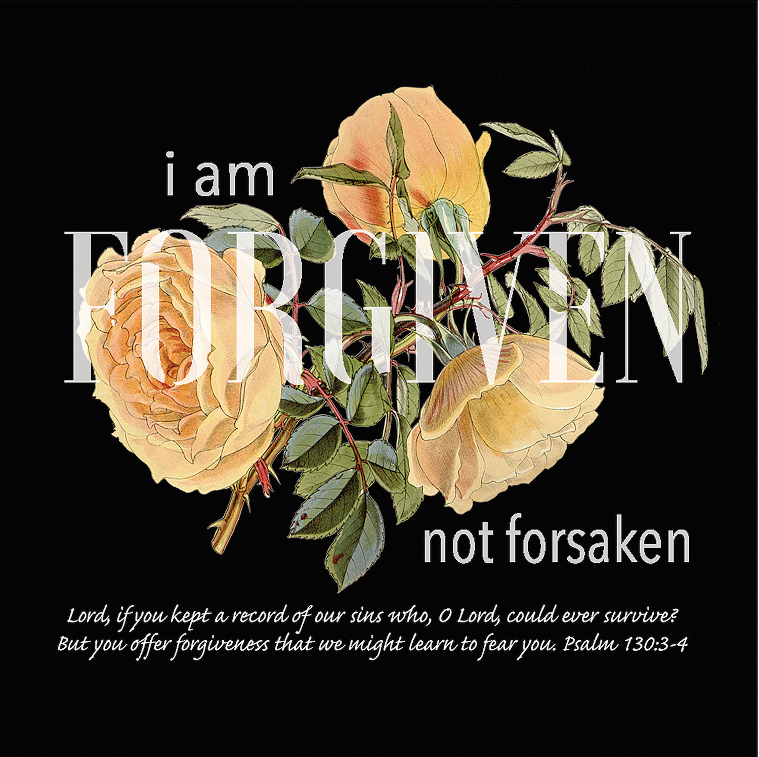 Feature Post9 – Forgiven