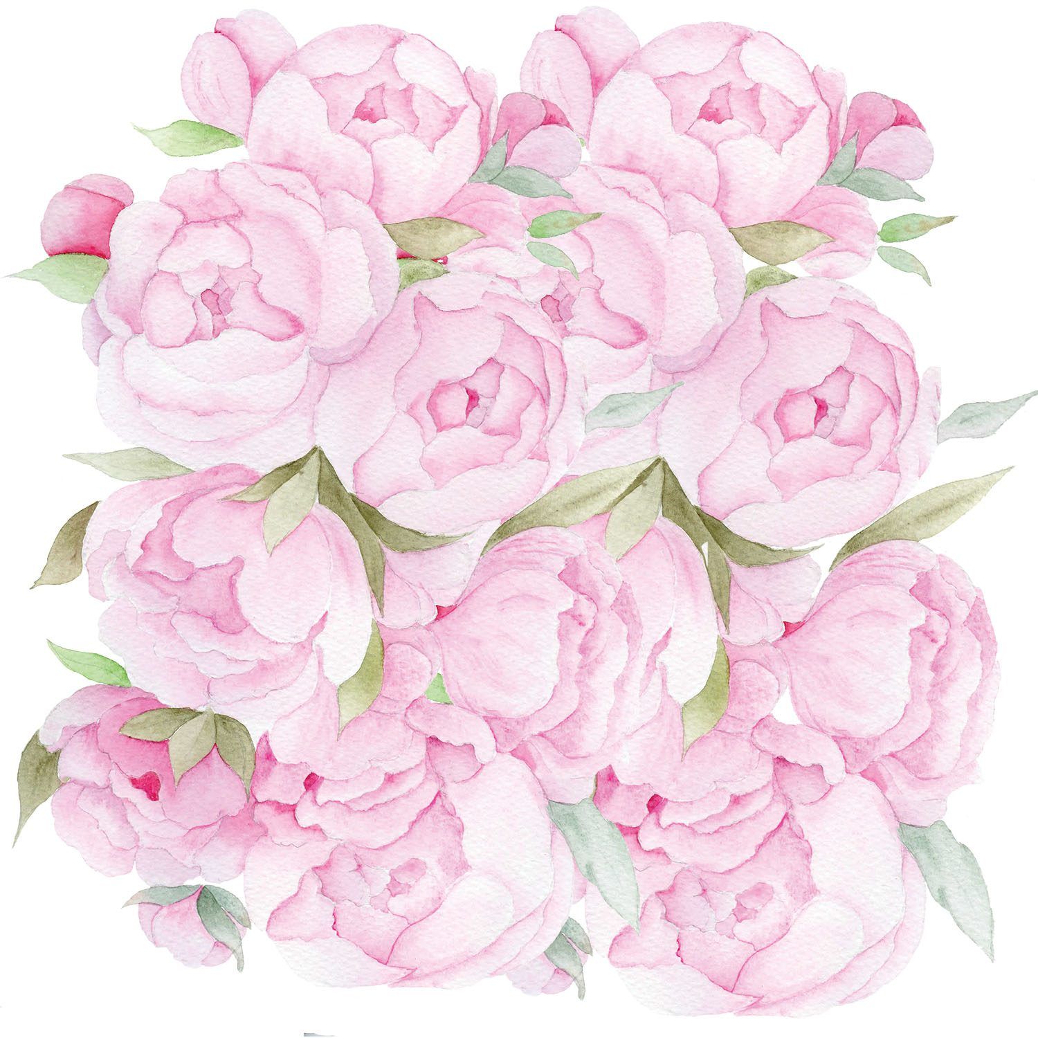 Feature Post12-Peony Clusters